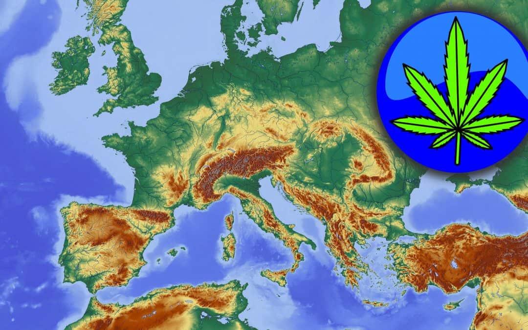 Sicherstellung von Cannabis: Droge Nummer 1