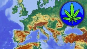 Sicherstellung von Cannabis