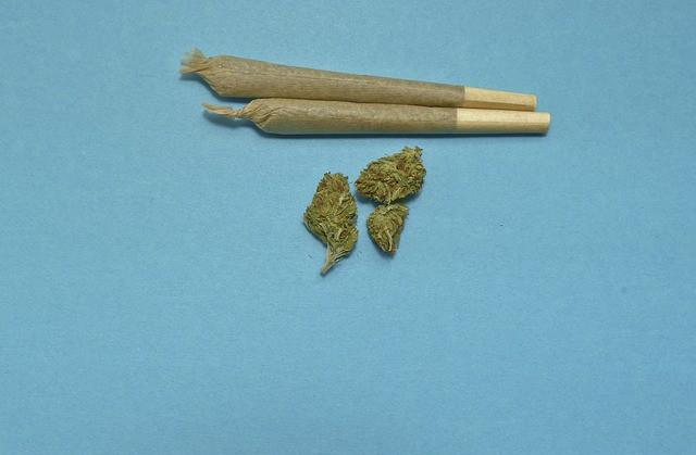 Cannabiskonsum junger Männer steigt